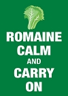 Romaine Calm Magnet