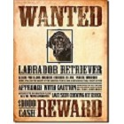 Black Lab Wanted Metal Sign