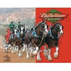 Budweiser Clydesdales Metal Sign
