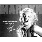 Marilyn Monroe - Definitely Metal Sign