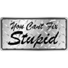 You Can't Fix Stupid License Plate