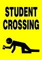 Student Crossing Magnet