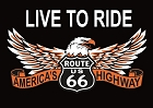 Rt. 66 Eagle Magnet