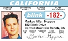 Blink - Mark ID