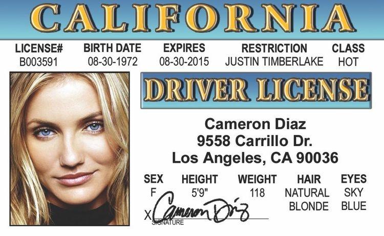 Signs 4 Fun Ntwidb Bellas Drivers License
