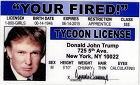 Trump Your Fired ID