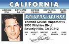 Tom Cruise  ID