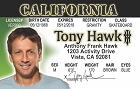 Tony Hawk ID