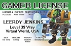 Video Gamer License