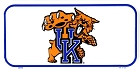 University of Kentucky Wildcats  Bike Tag