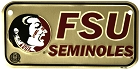 Florida State Seminoles Bike Tag