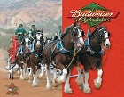 Budweiser Clydesdales Metal Tin Sign