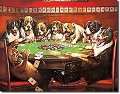 8 Dogs Playing Poker Metal Tin Sign