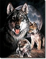 Graham - Wolf Experience Metal Tin Sign