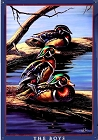 The Boys - Meger - Ducks Metal Sign