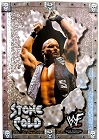 Steve Austin WWF Metal Sign