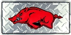 Arkansas Razorback Only License Plate