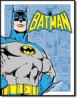 Batman II Metal Tin Sign